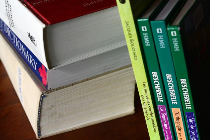 Dictionnaires et becherelles