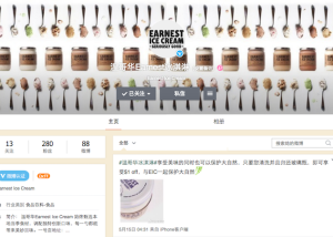 Chinese social media case study Chinese new year