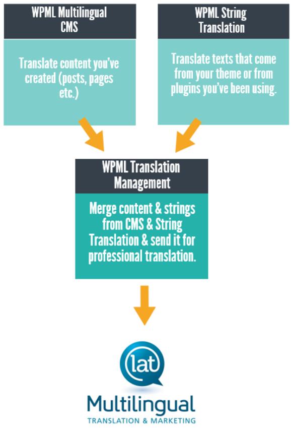 wpml layout